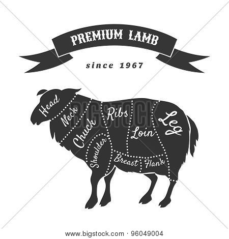 Lamb cuts for butcher shop poster