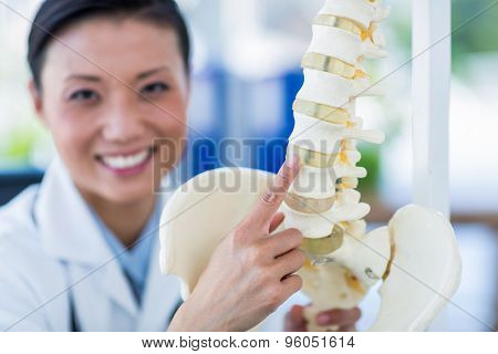 Smiling doctor showing anatomical spine in medical office