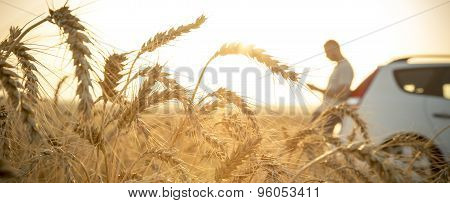 Man Stuck With His Car In A Wheat Field