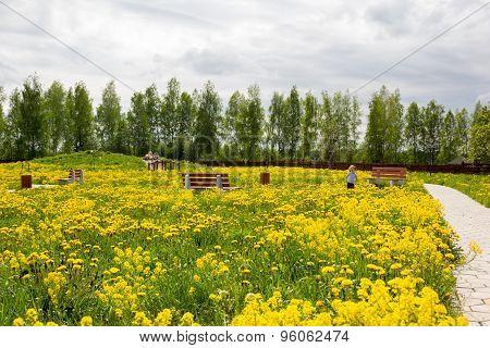 Little Girl In Park Overgrown With Dandelions