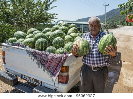 SULTANIYE, TURKEY - JULY 05, 2015: The farmer and his crop grown watermelons