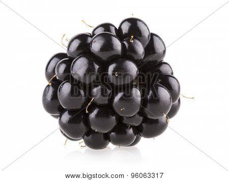 fresh blackberry isolated on white background