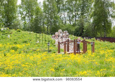 Little Girl Stands On Bridge In Park Overgrown With Dandelions