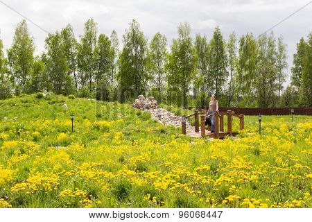 Woman Stands On Bridge In Park Overgrown With Dandelions