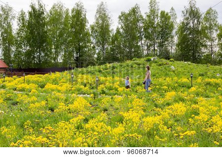 Little Girl Walks In Park Overgrown With Dandelions With Mother