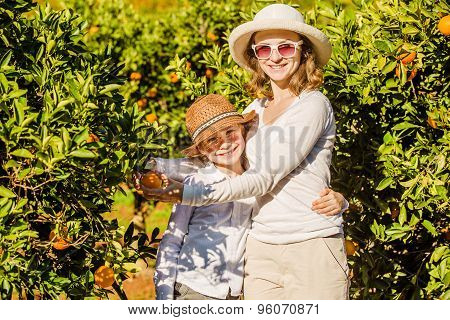 Smiling happy mother and son harvesting oranges mandarins at citrus farm