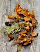 picture of dry grass  - Arrangement of Dried Forest Chanterelles Porcini and Boletus Mushrooms with Dry Grass Stems and Leafs closeup in Rustic Wooden background - JPG