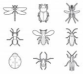 picture of cockroach  - Insects mono line icons vector set - JPG