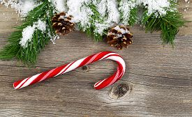 picture of candy cane border  - Christmas border with snow covered pine tree branches cones and a single large candy cane on rustic wooden boards - JPG