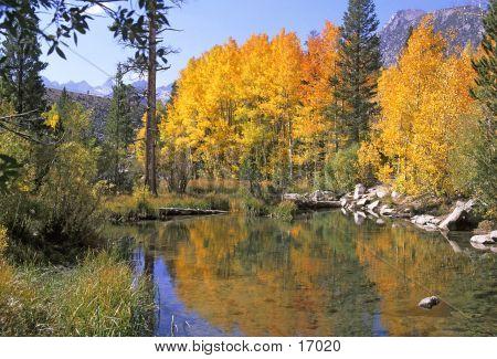 Sierra Nevada-Herbstfarben