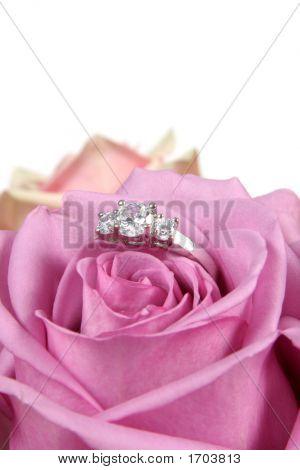 Engagement Ring In Pink Rose Taken Closeup