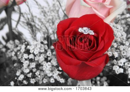 Ring In Red Rose