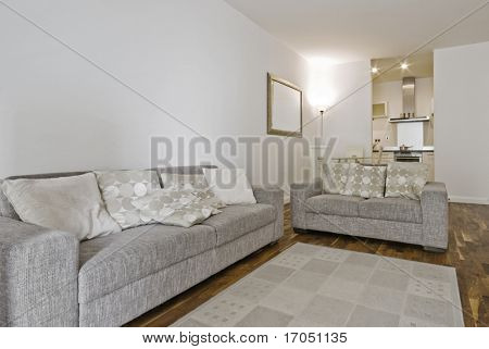 fully furnished open plan living room with two linen sofas
