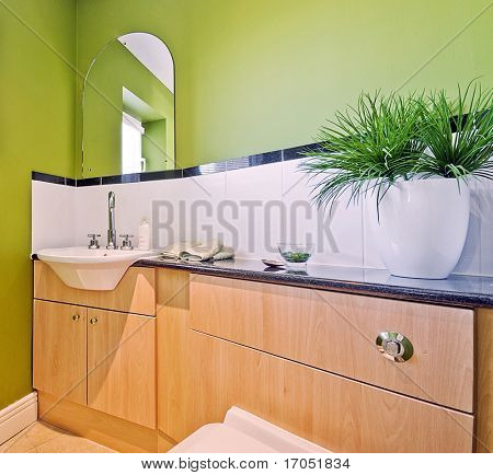 modern luxury bathroom in green with white ceramic suite