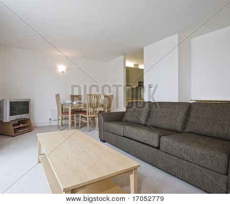 modern open plan living room with dining area