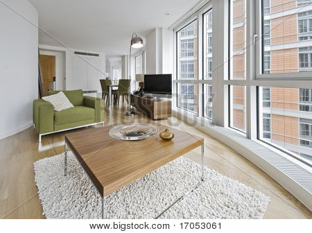 luxury living room with contemporary furniture and accessory
