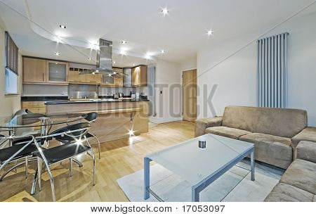 modern luxury open plan apartment with massive kitchen and breakfast bar