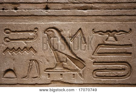 Hieroglyphs in Horus  temple in Edfou in upper egypt