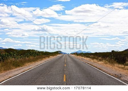 straight road of ceara state in brazil with blue sky and clouds
