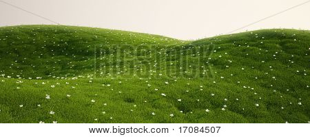 3d rendering of a green field with white flowers