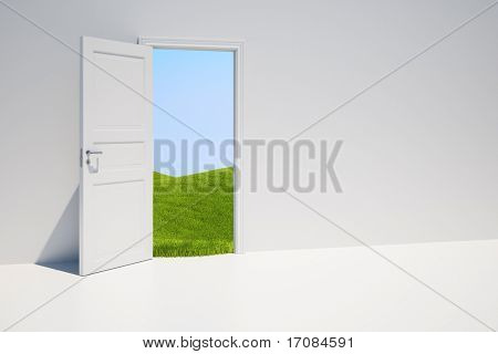 3D rendering of a door with a grass field behind it.