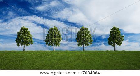 3d rendering of a green field 4 tree on a row and a nice sky