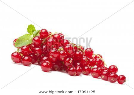redcurrant berries isolated