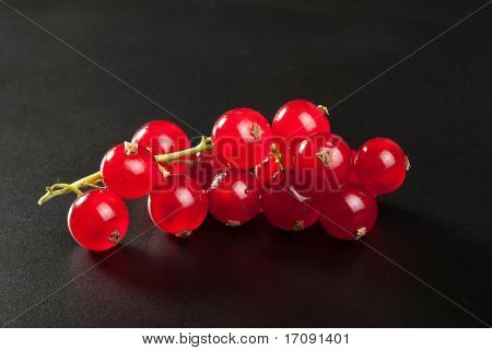 redcurrant over black