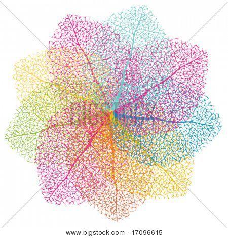 Elemento del vector colorido. Hojas de verano Resumen