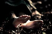 Постер, плакат: Feet Of A Dead Child In Forest Detritus