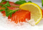 foto of ice cube  - Fresh salmon steak on ice - JPG