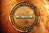 metabolism, 3D rendering, text on metal poster