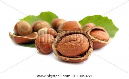 Hazelnuts broken with leaves