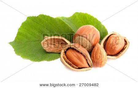Hazelnuts broken with leaves