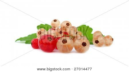 Redcurrant red currants and white currants with green leaves