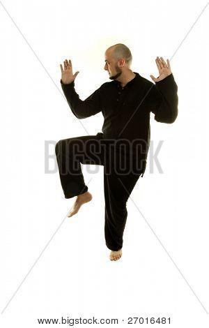 Tai Chi chuan man is practicing martial art