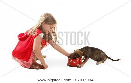 Girl is feeding her dog