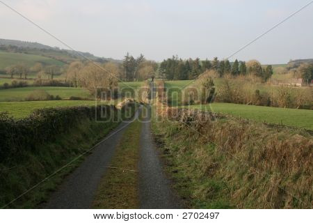 Country Road In Ireland