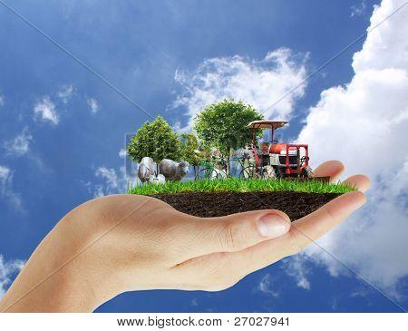 Agricultura en la mano