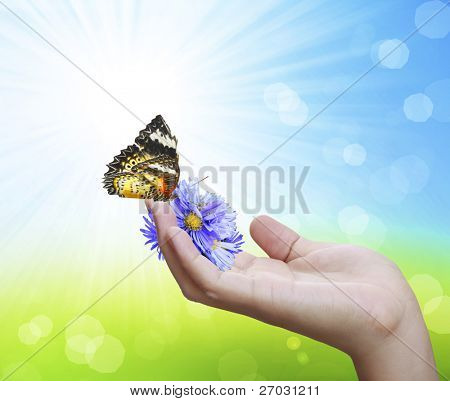 Hand holding  of flowers with butterflies
