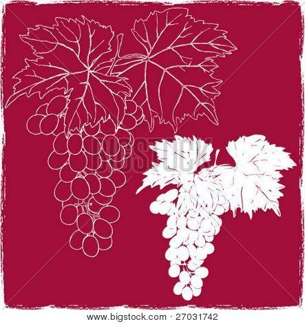 silueta de racimo de uvas