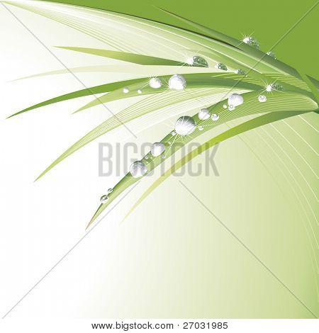 Water drops On Green Leaves, raster version