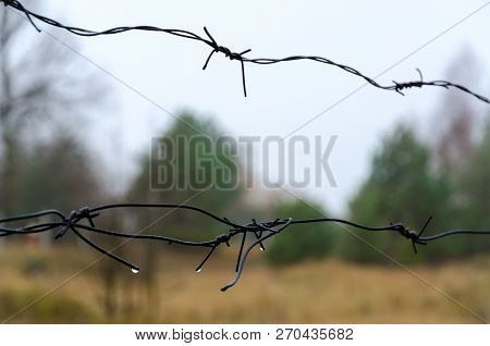 Barbed Wire In Exclusion Zone