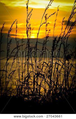 Sunset at coast of the sea at Samed island, Thailand.