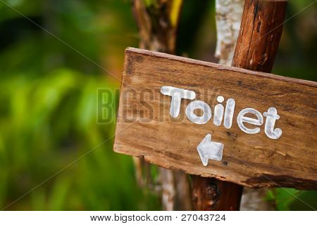A wooden sign hung over the entrance to a toilet