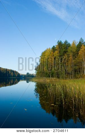Morning On A Quiet Forest Lake