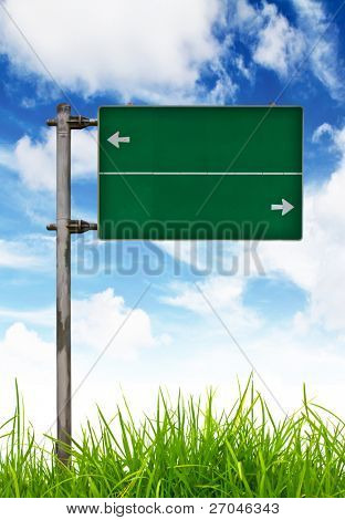Green Traffic sign on green grass and blue sky.