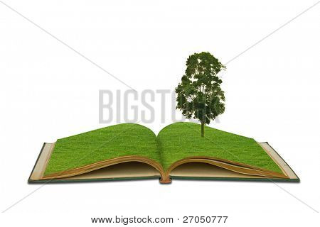 Magic book with Tree growing on white background
