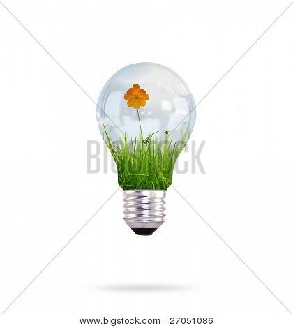 bombilla con bella flor interior