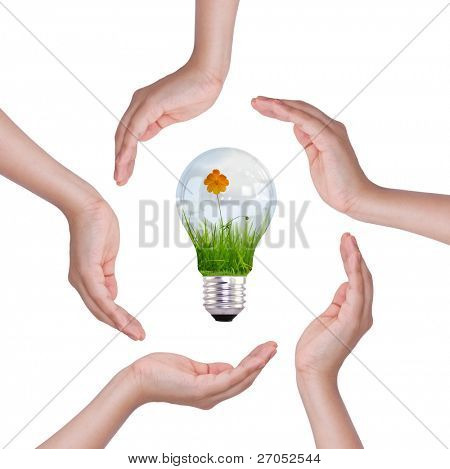 Light bulb in hand (light bulb with beautiful flower inside)